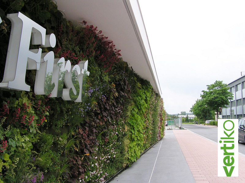 Luther Meran Living Wall