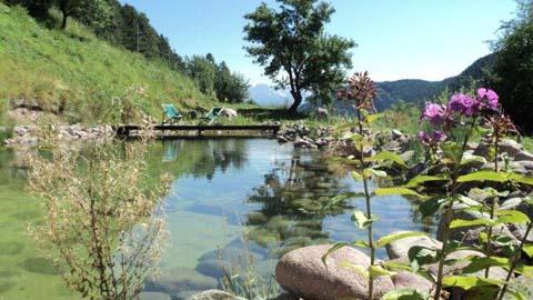 Schwimmteich Bozen Südtirol