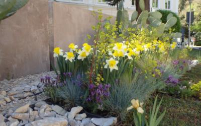 Primavera Meranese