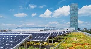 Grün und Solar